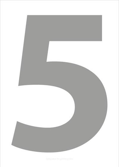 5 Gray