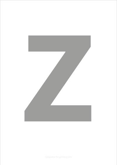 Z Capital Letter Gray